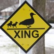 Royalty-Free Stock Photo: Duck crossing warning sign.