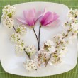 Easter place setting with spring flowers and blossom — Stock Photo #9634191