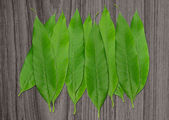 Pile of green leaves on wooden — Stock Photo