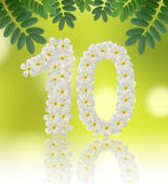 Numbers ten made of tropical flowers frangipani (plumeria) — Stock Photo