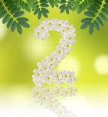 Numbers two made of tropical flowers frangipani (plumeria) — Stock Photo