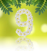 Numbers nine made of tropical flowers frangipani (plumeria) — Foto Stock