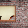 Vintage gold frame with burned on wall background — Stock Photo