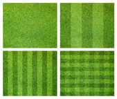 Set of green grass background — Stock Photo