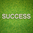 Success word made from flowers on green grass background — Stock Photo