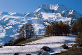 Mountain and Glacier of Mont Pourri — Stock Photo