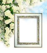 Vintage Background with beautiful white flower — Stock Photo
