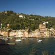 The wonderful village of Portofino,Liguria,Italy — Stock Photo #9192093
