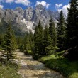 Dolomiti near San Martino di Castrozza,Trentino,Italy — Stock Photo