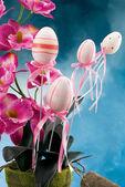 Couleur des œufs une décoration — Photo