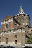 View of Pavia — Stock Photo