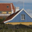 Denmark colored houses — Stock Photo #9656946