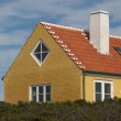 Denmark colored houses — Stock Photo #9657026