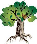 Treeoak — Stock Vector