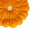 Orange pattypan squash — Stock Photo
