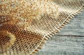 Dry flower on jute ribbon — Stock Photo
