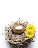 Golden Egg in the Nest with Flowers - Finance Concept — Stock Photo