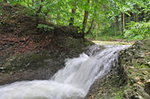 Wasserfall im Wald — Stock Photo