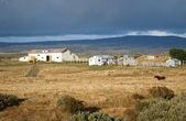 Fazenda patagônia em queda, chile. — Fotografia Stock