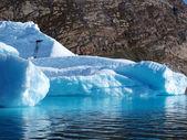 Bergy bit, Greenland. — Stock Photo