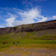 Landscape of summer in the mountains of Iceland — Stok fotoğraf