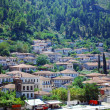 Buildings of ancient city of Berat in Albania — Stock Photo #8030740