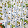 Stock Photo: Muslim cemetery in Sarajevo, Bosnia