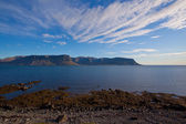 Summer landscape in the fjords of Iceland — Stock Photo