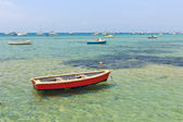 Wooden boat in shallow water — Stock Photo