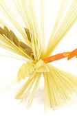 Bunch of spaghetti with color fusilli — Stock Photo