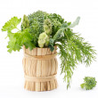 Bouquet of greens — Stockfoto