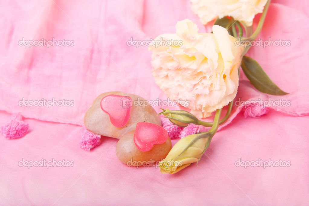 Decorative valentines with a flower on   pink Scarves — Stock Photo #8947447