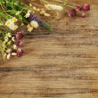 Summer flowers on wooden background — Stock Photo