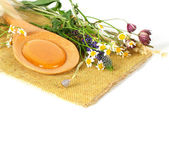 Honey and flowers - natural sweet background — Stok fotoğraf