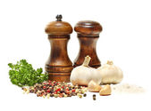 Salt and pepper shaker, garlic, parsley isolated — Stock Photo