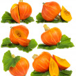 Pumpkin  isolated on white - set - Stock Photo