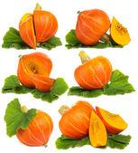 Pumpkin isolated on white - set — Stock Photo