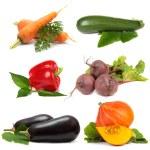 Vegetable set isolated on white background - collage — Stock Photo