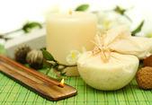 Concetto di spa su sfondo verde bambù — Foto Stock