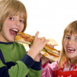 Stock Photo: Children eat a sandwich