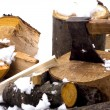 Stock Photo: Chopping wood