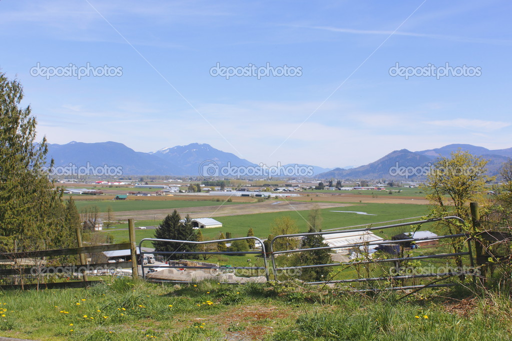Farms dot the landscape in British Columbias Fraser Valley district.  — Stock Photo #10179704