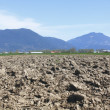 A Ploughed Field — Stock Photo