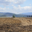 Tractor Plows the Field — Stockfoto