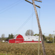 A Leaning Telephone Pole and Red Barn - Stock Photo