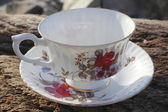 Cup and Saucer — Stock Photo