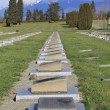 A Row of Graves Marking Military Vetrans — Stock Photo