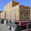 Rear View of a Large Lumber Hauling Truck — Stock Photo