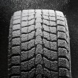One snowed winter tire tread — Stock Photo #8366016