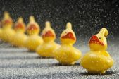 Row of yellow rubber toy ducks in snow flakes — Stock Photo